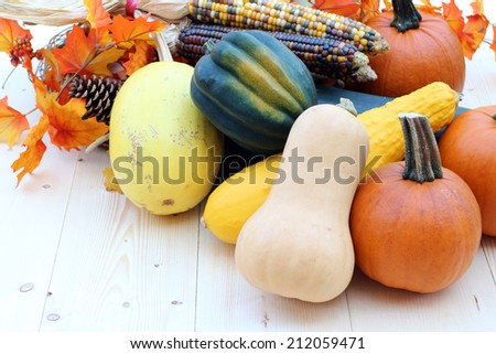 Harvest season and decoration with gourd and pumpkin - stock photo