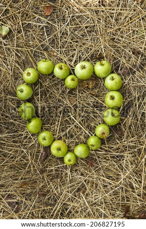Harvest time, healthy organic green apples on hay, straw.  Heart symbol made from green ripe small apples, close up - stock photo