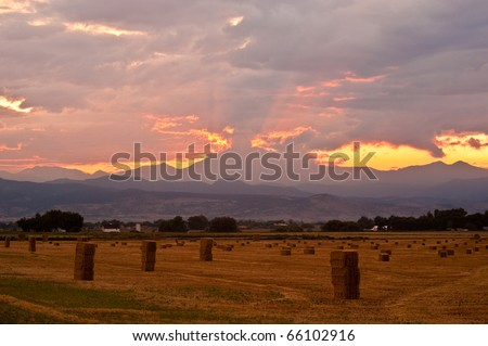 Harvest Time In Colorado - stock photo