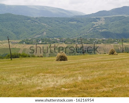 Harvest time in georgia. Haystack on the golden field