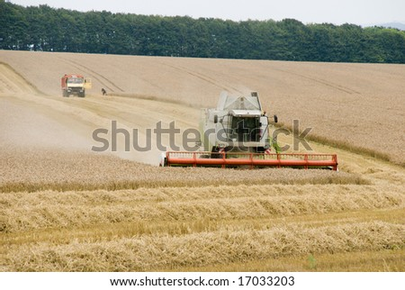 Harvest time, Waltshire, United Kingdom - stock photo