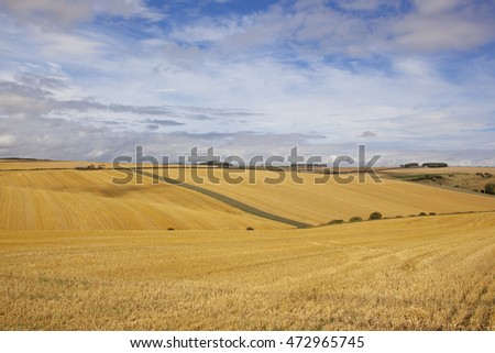 harvested barley fields with scenic countryside under a cloudy blue sky in the yorkshire wolds