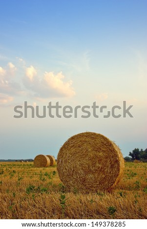 Harvested field with straw bales