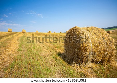 harvested field with straw bales in summer