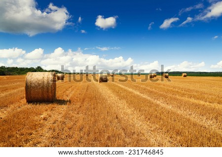 Harvested fields with haybales  - stock photo