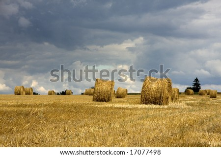 Harvested hay in the field and approaching storm