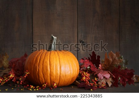 Harvested pumpkin and berries on wood table for Thanksgiving - stock photo