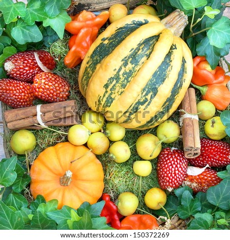 Harvested pumpkins with fall leaves and autumn fruit   - stock photo