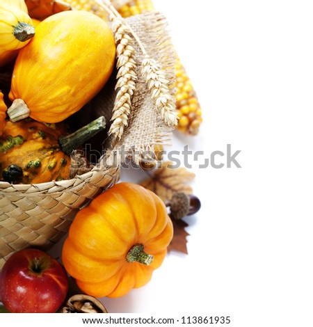Harvested pumpkins with fall leaves. With copyspace - stock photo