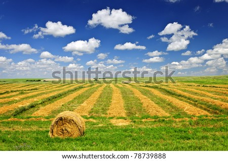Harvested wheat on farm field with hay bale in Saskatchewan, Canada - stock photo
