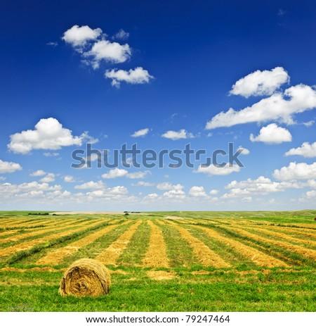 Harvested wheat on farm field with hay bale in Saskatchewan, Canada - stock photo