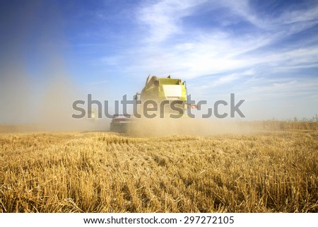 Harvester at the field NOTE models are unknown and there are no visible trademarks  - stock photo