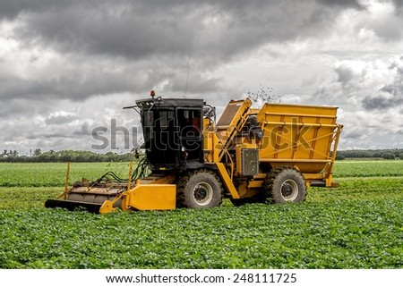 Harvester collecting the crop for the season - stock photo