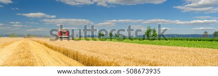 Harvester combine harvesting wheat on agricultural field on sunny summer day.