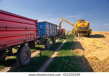 Harvester combine, tractor and trailers during wheat harvest on sunny summer day. - stock photo
