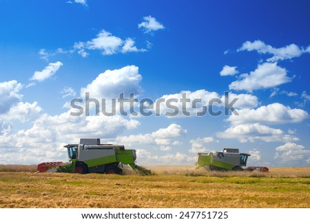 Harvester in the field. Harvest time
