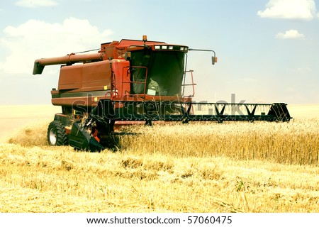 harvester in the field of gold wheat against the blue sky - stock photo
