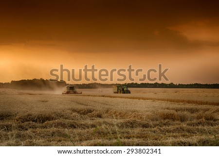 Harvester in work - stock photo
