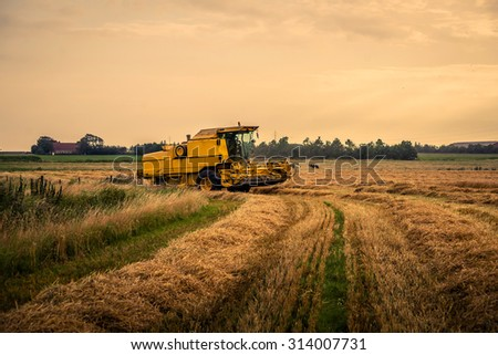 Harvester on a field at a farm in the summer