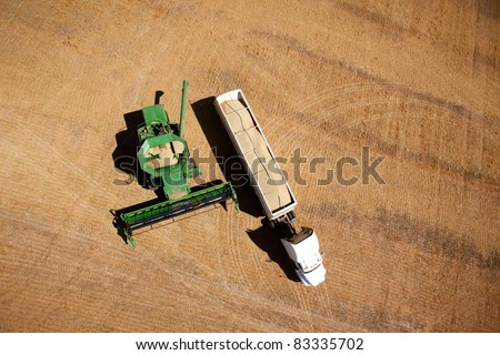 Harvester on a field emptying lentils into a semi-truck - stock photo