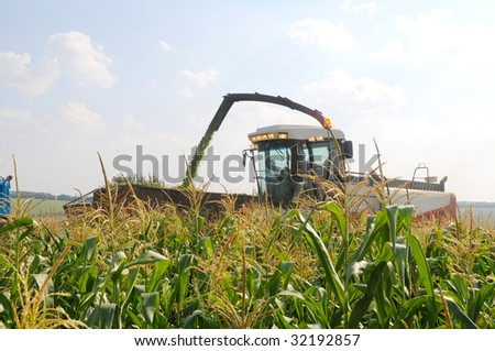 harvester reaps a crop of corn - stock photo