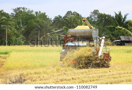 Harvesters in the field - stock photo