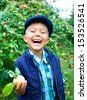 Harvesting apples. Cute little boy helping in the garden and picking apples. - stock photo