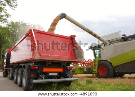 harvesting, filling grain in trailer - stock photo