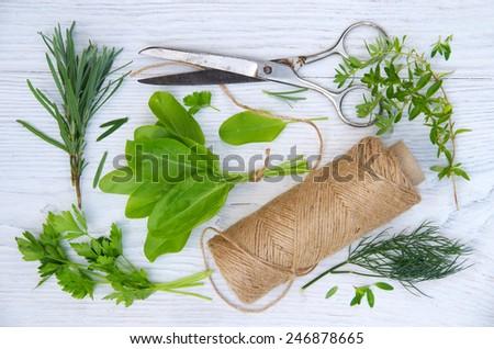Harvesting herbs. Fresh herbs on white wooden table. - stock photo