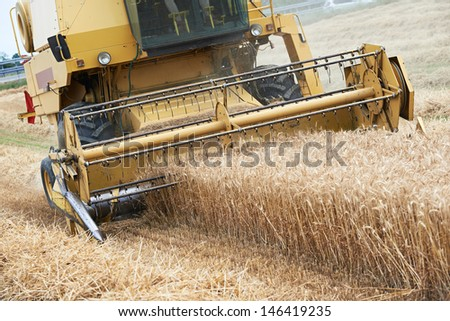 harvesting machine combine working at wheat or rye grain crop field - stock photo