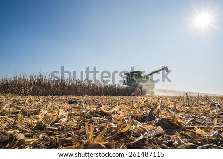 Harvesting of corn field - stock photo