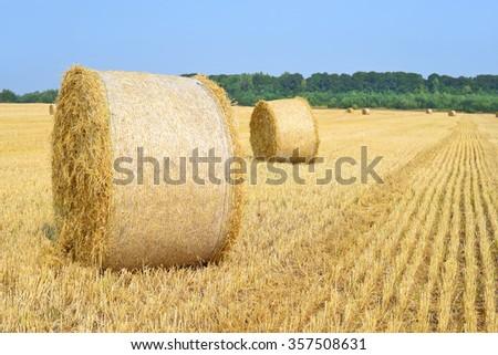 Harvesting of straw - stock photo