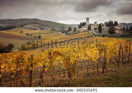 harvesting period in the Tuscan vineyard, Chianti, Italy (warm filter) - stock photo