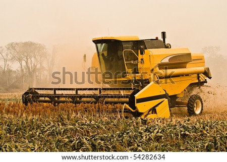 harvesting season - stock photo