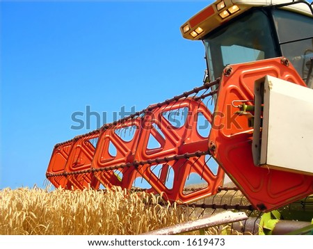 Harvesting the corn field - stock photo