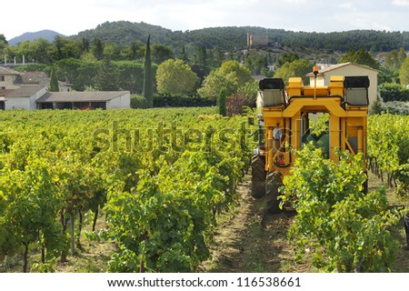 Harvesting the grapes on a mechanical way in France