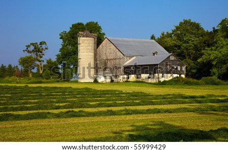 Harvesting the hay on an Ontario farm - stock photo