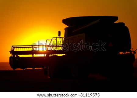 Harvesting Wheat at Sunset