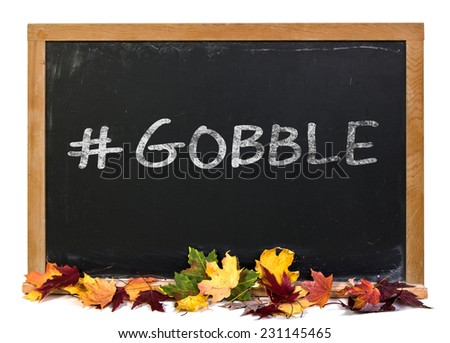 Hashtag gobble written in white chalk on a black chalkboard with fall leaves isolated on white - stock photo