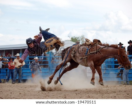 HASTINGS - October 24: Cowboy mid air after being bucked off.  Hastings New Zealand 24 October 2008 - stock photo