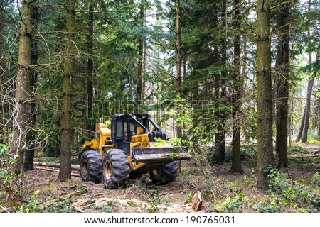 Hauling wood in the forest by a grapple skidder - stock photo