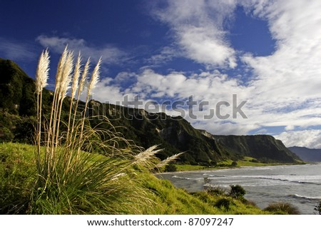 Hautai beach in the East Cape region of the North island of New Zealand - stock photo