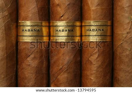 Havana cigars texture - stock photo