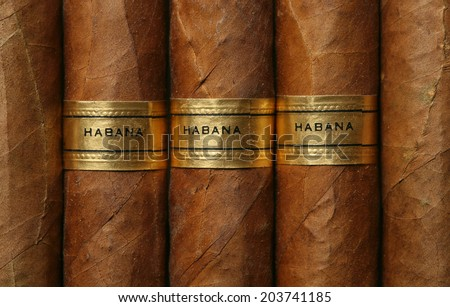 Havana cigars texture. Full frame - stock photo