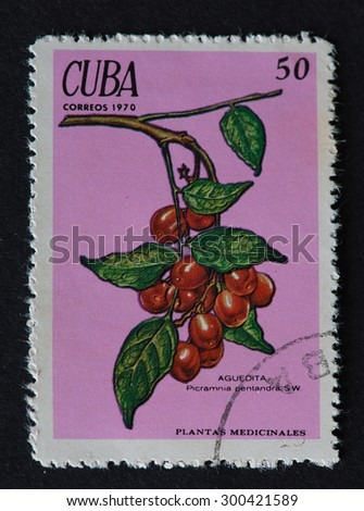 HAVANA,CUBA- REVOLUTIONARY PERIOD:Cuban 1970 postal stamp depicting the image of medicinal plant Aguedita Picramnia Pentandra SW. A plant with red coloured cherry like fruits. - stock photo