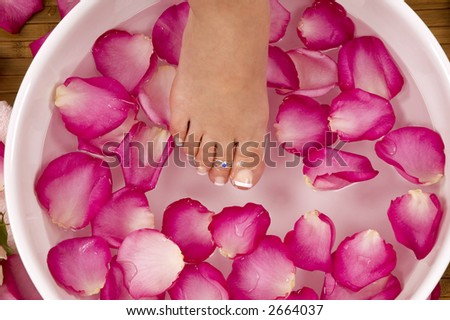 Having spa treatment with mineral water and bright colored lilac-pink rose petals - stock photo