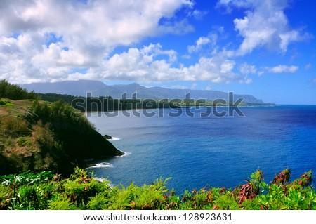 Hawaii Shoreline - stock photo