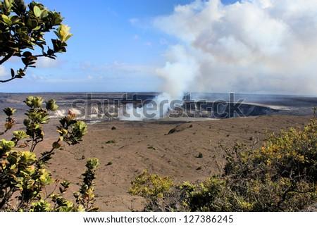 Hawaii volcanoes National Park - crater on the caldera Halemaumau. Kilauea volcano and endemic Lehua tree - stock photo