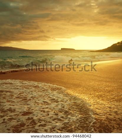 hawaiian beach - stock photo