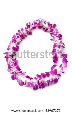 Hawaiian lei made of large orchid blooms - stock photo